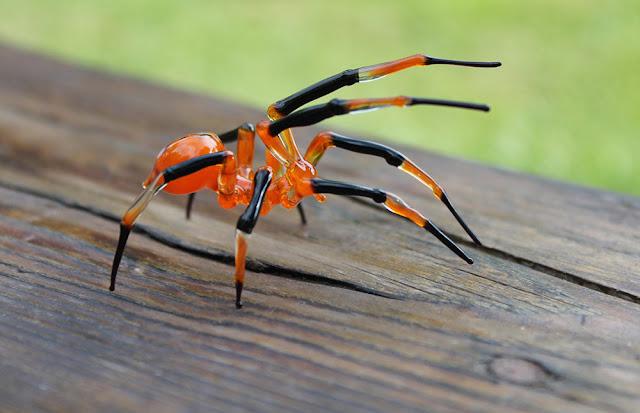 laba sanggup ditemukan di seluruh dunia di setiap benua kecuali di Antarktika Fakta-Fakta Laba-Laba dan Foto-Foto laba-laba