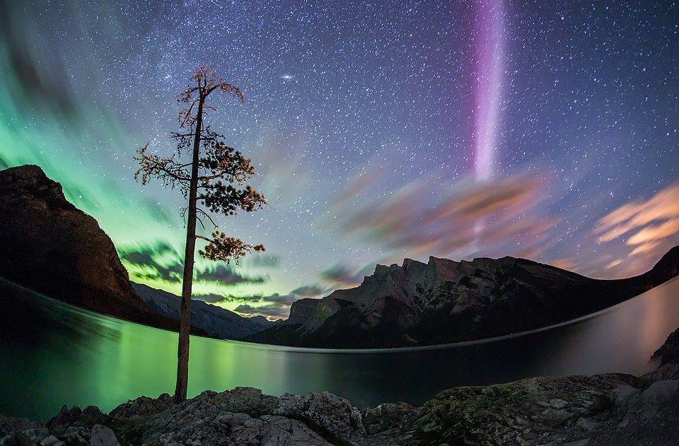 steve-aurora-5