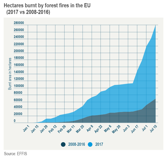 Hectares burnt by forest fires in the EU, 2017 vs 2008-2016. Source: EFFIS. Graphic: Euronews