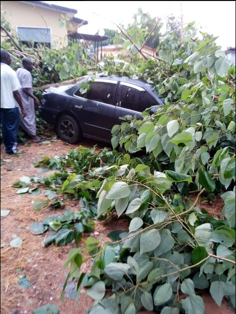 A ghastly motor accident which occurred yesterday, has left people in awe