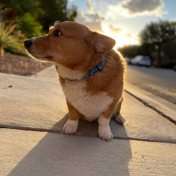 Kyle Higa photos, images