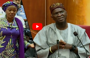 VIDEO: During your first tenure i didn't get employment letter for my constituents, senator Tinubu tells Fashola