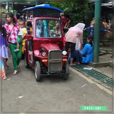 Mobil Antik di Taman Topi