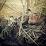 Alex Spinks's profile photo