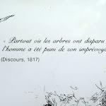 """Citation de Chateaubriand  """"Partout où les arbres..."""""""