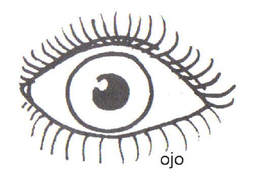 Dibujos De Ojos Para Colorear