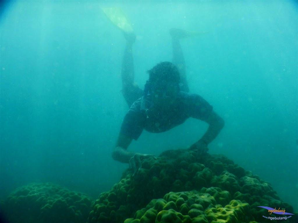 pulau pari, 23-24 mei 2015 04