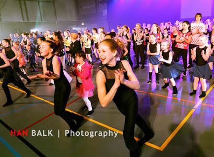 Han Balk Voorster Dansdag 2016-3588.jpg