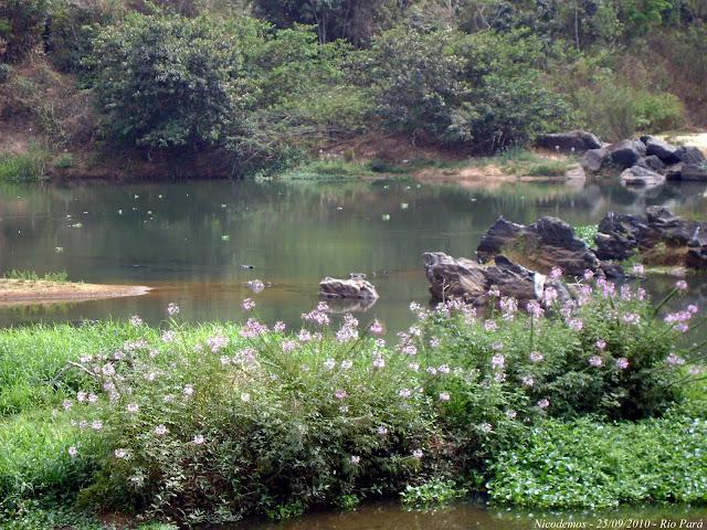 Le Rio Para près de Pitangui (MG, Brésil), 25 septembre 2010. Photo : Nicodemos Rosa