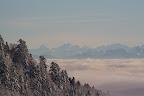 JURA AU CHOIX : COUP DE BLUES OU COUP DE SOLEIL ?Hêtraie-pessière d'altitude, bassin du Léman et chaîne des Alpes depuis le Col de la Faucille