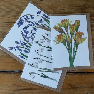 Spring Flowers card set by Alice Draws The Line
