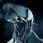 Илья Шелеменцев avatar image