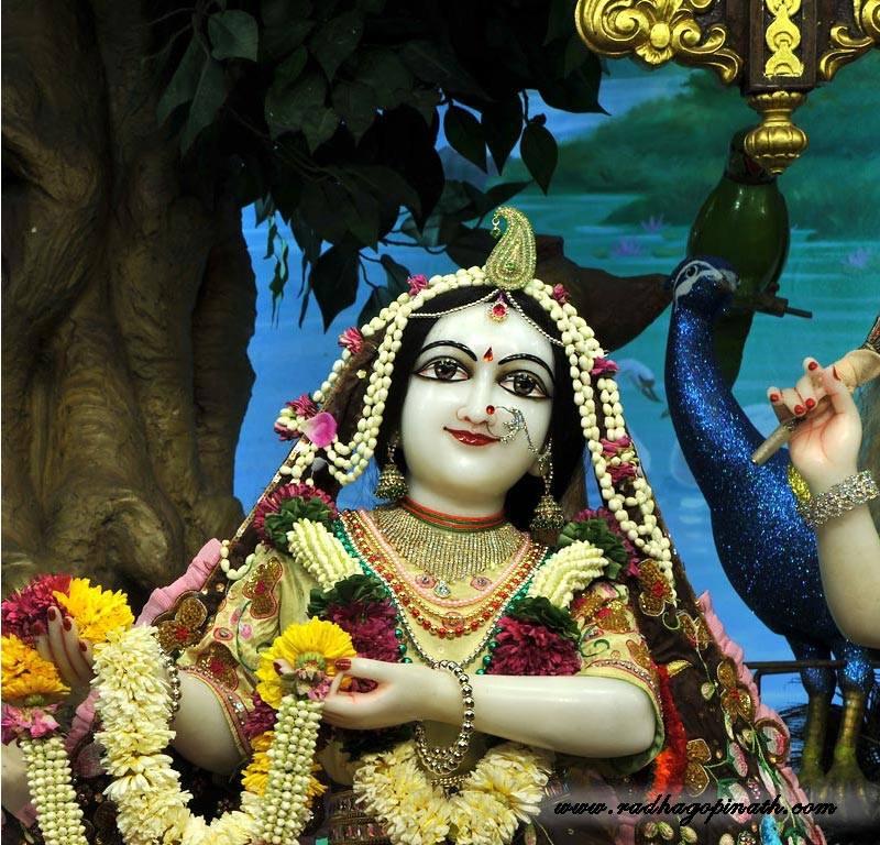 ISKCON Chowpatty Deity Darshan 01 Mar 2016  (18)