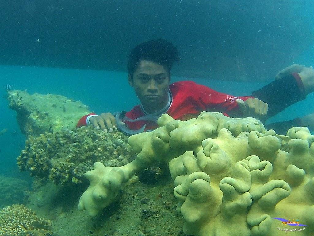 pulau pari 050516 GoPro 72