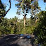 Rock  platform south of Patonga Creek (379037)