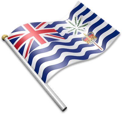The BIOT flag on a flagpole clipart image
