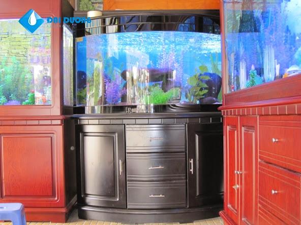 tủ hồ cá cảnh