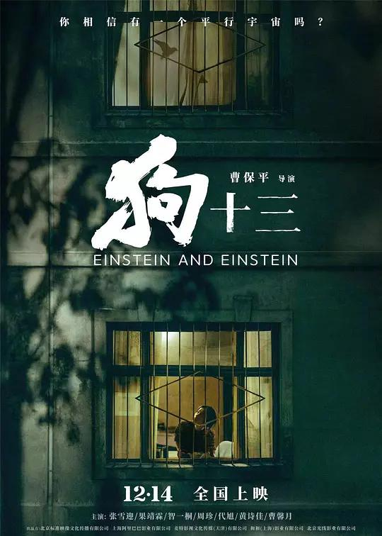 Einstein and Einstein China Movie