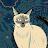 Rayhan Crap avatar image