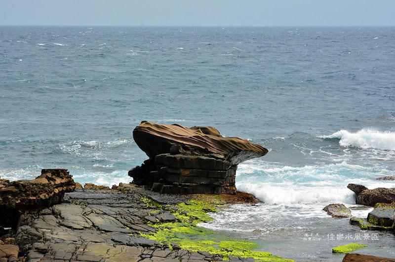 佳樂水風景區海蛙石