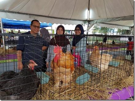 pameran-haiwan-ternakan-maha-2016