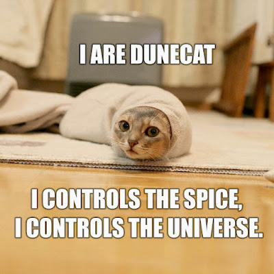dune%2Bcat.jpg