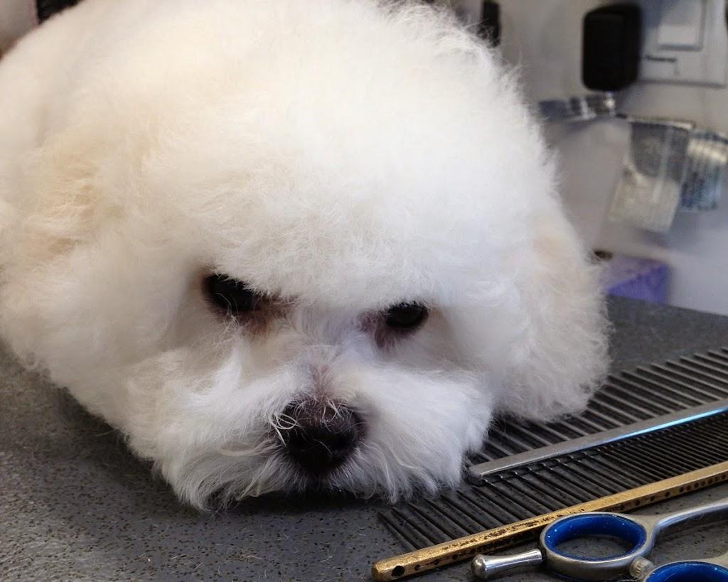 grooming1hc