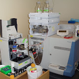 Lab Photos! - DSC00009.JPG