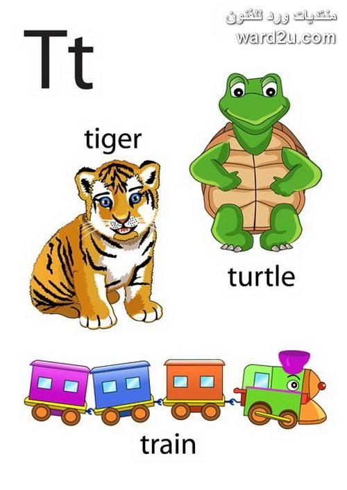 الابجدية الانجليزية حروف مصورة للاطفال English Alphabet