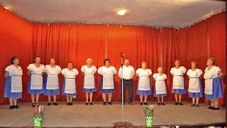 Jákó Búzavirág Nyugdíjas Klub Énekkara - Dél-Dunántúli népdalok video