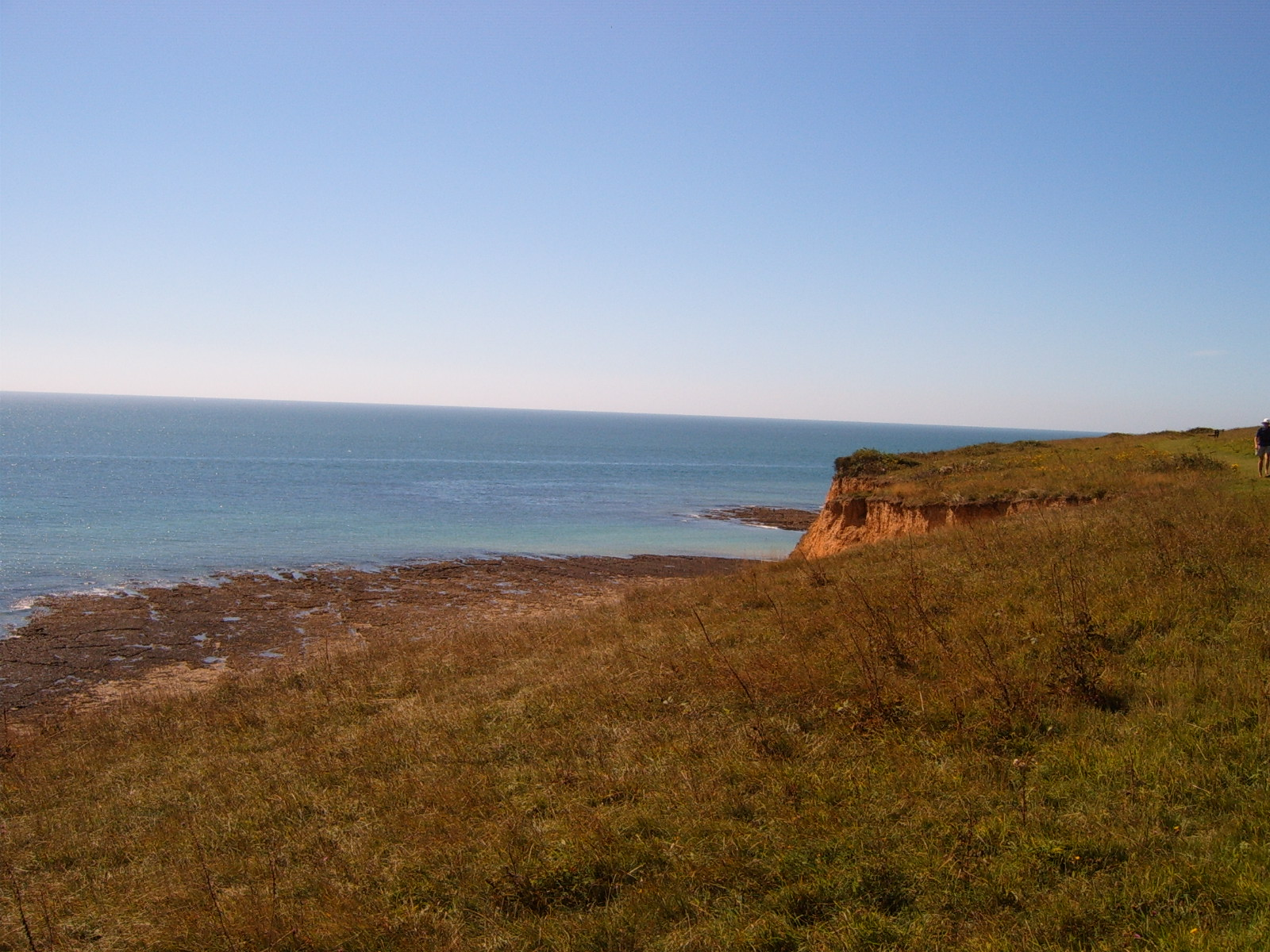 Cliffs above Seaford