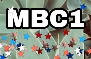 الوسيلة الوحيدة المتاحة لإستقبال MBC 1 فضائياً في دول شمال غرب أفريقيا 2021