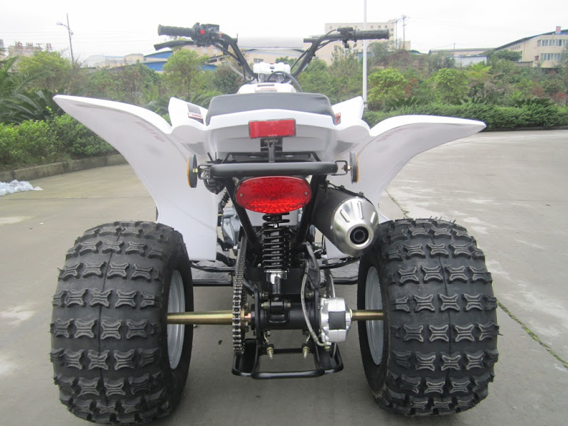 "125cc Large Kids Sports Quad Bike ATV Rear 8"" Wheels"