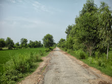 Road to Chak No. 25