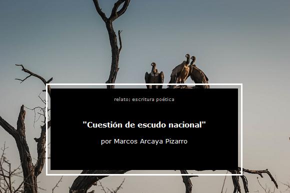 Marcos Arcaya Pizarri, narración, cuento, Cuestión de escudo nacional