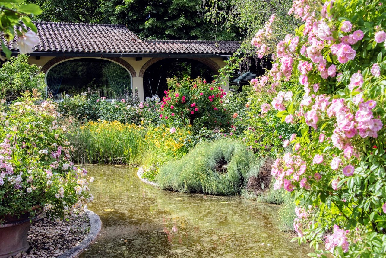 Villa delle Rose_Civitella Val di Chiana_2