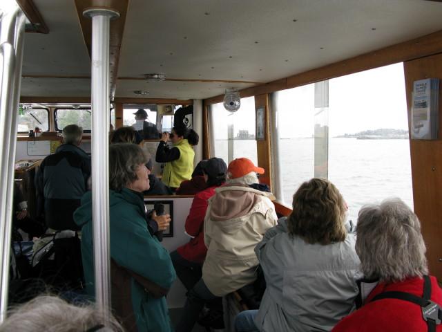 Seal Cruise - seal19.jpg