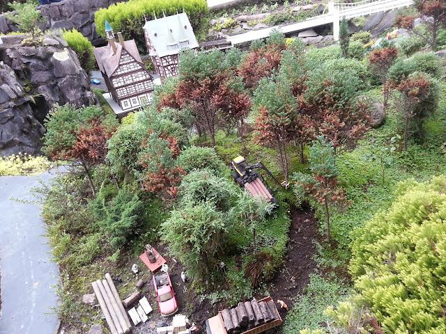 Extração de eucalípto na mini-cidade!
