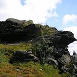 Volovec Skalisko (22) (800x600).jpg