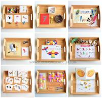 Montessori Inspired Bird Unit Activities for Preschoolers