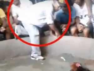 Hombre muere luego que ganara gallo suyo en gallera clandestina de SFM
