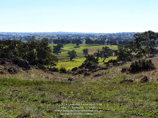 Springton to Eden Valley (5)