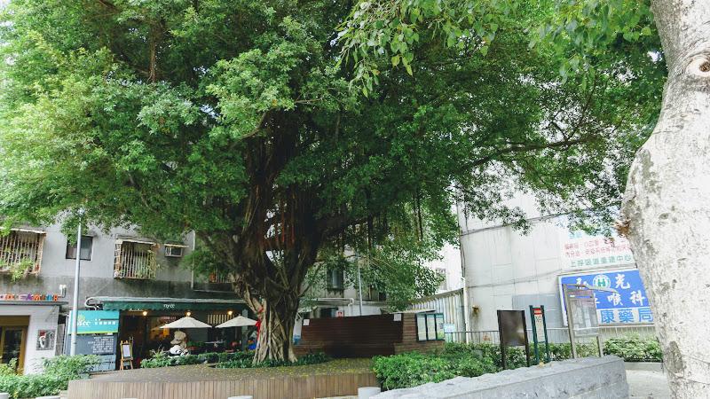 NYCC 紐約社區咖啡館在一棵大樹後面.JPG