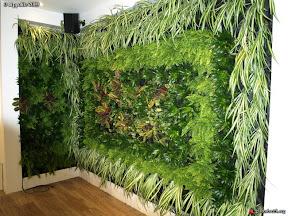 mur végétal dans un bar restaurant a Cannes prés du MIRAMAR sur la CROISETTE