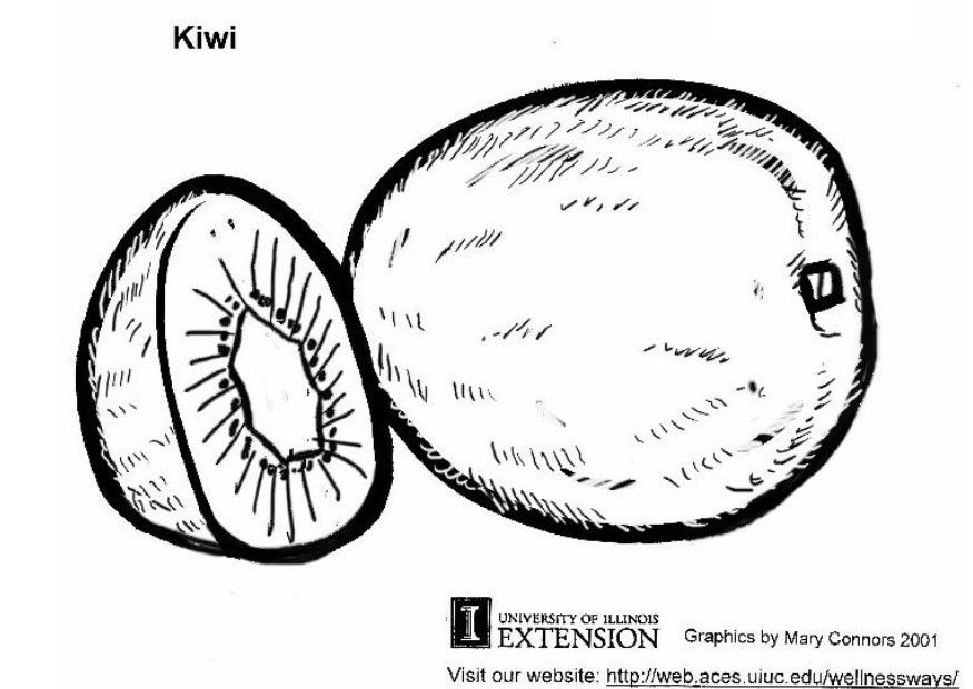 [kiwi%5B2%5D]