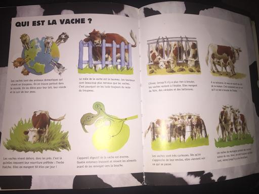la vache édition Nathan