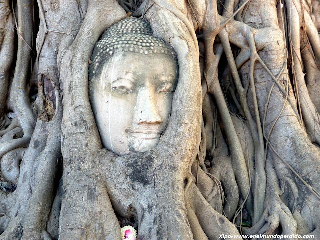 cabeza-buda-arbol-ayutthaya.JPG