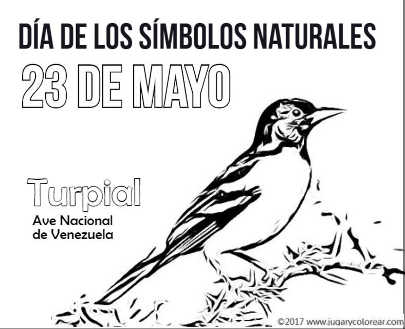 [23+mayo+venezuela++turpial%5B2%5D]
