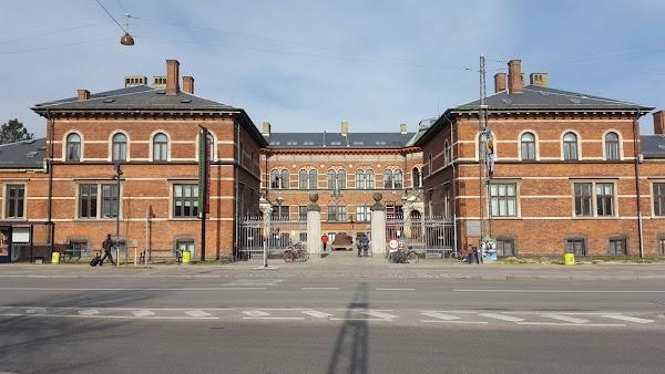 aarhus zoo geologisk museum København