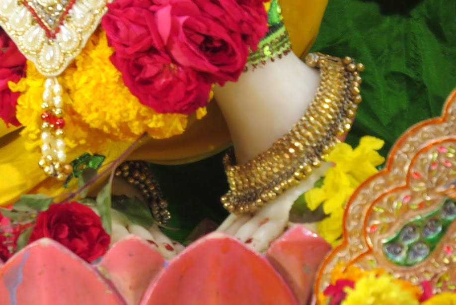 ISKCON Vallabh vidhyanagar Deity Darshan 11 jan 2017 (4)